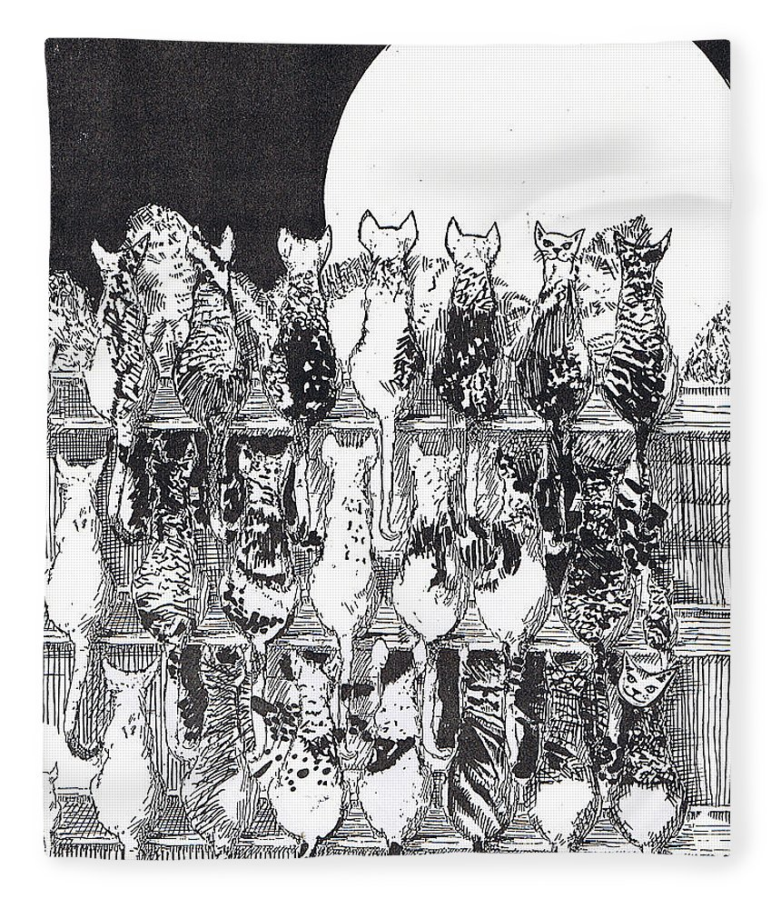 Cats Fleece Blanket featuring the drawing Two Dozen And One Cats by Seth Weaver
