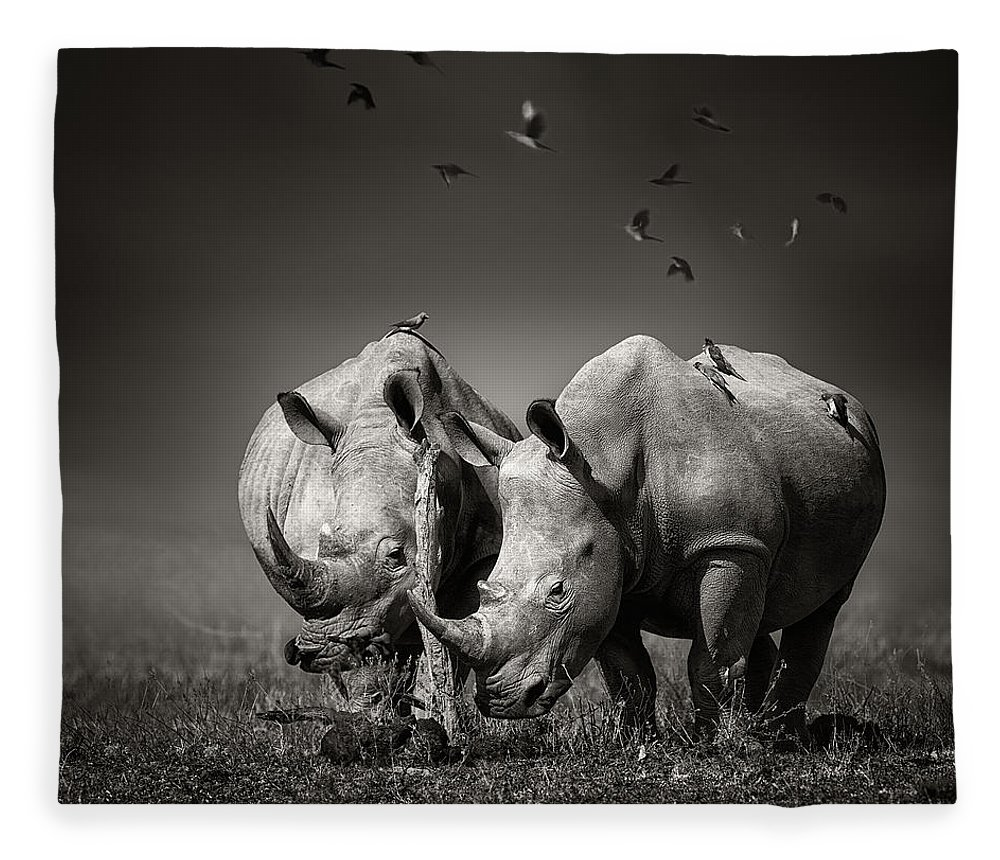 Rhinoceros Fleece Blanket featuring the photograph Two Rhinoceros With Birds In Bw by Johan Swanepoel