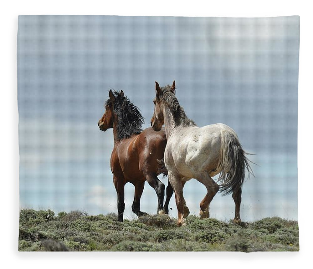 Wild Horses Fleece Blanket featuring the photograph We Will Be Over the Hill in a Few Seconds by Frank Madia