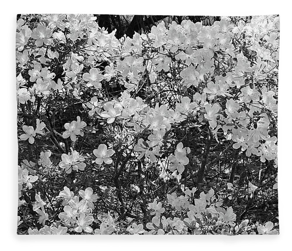 Photography Fleece Blanket featuring the digital art White Azalea Bush Close-up In Black And White by Marian Bell