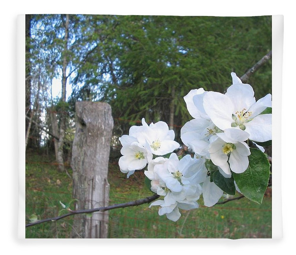 Flowers Fleece Blanket featuring the photograph White Flowers by Valerie Josi