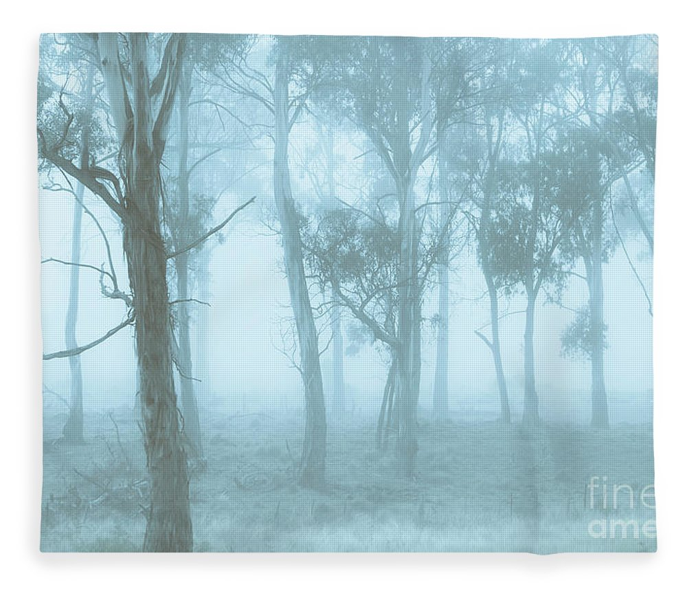Blue Fleece Blanket featuring the photograph Wild Blue Woodland by Jorgo Photography - Wall Art Gallery