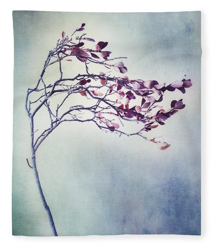 Blueberry Branch Fleece Blanket featuring the photograph Windswept by Priska Wettstein