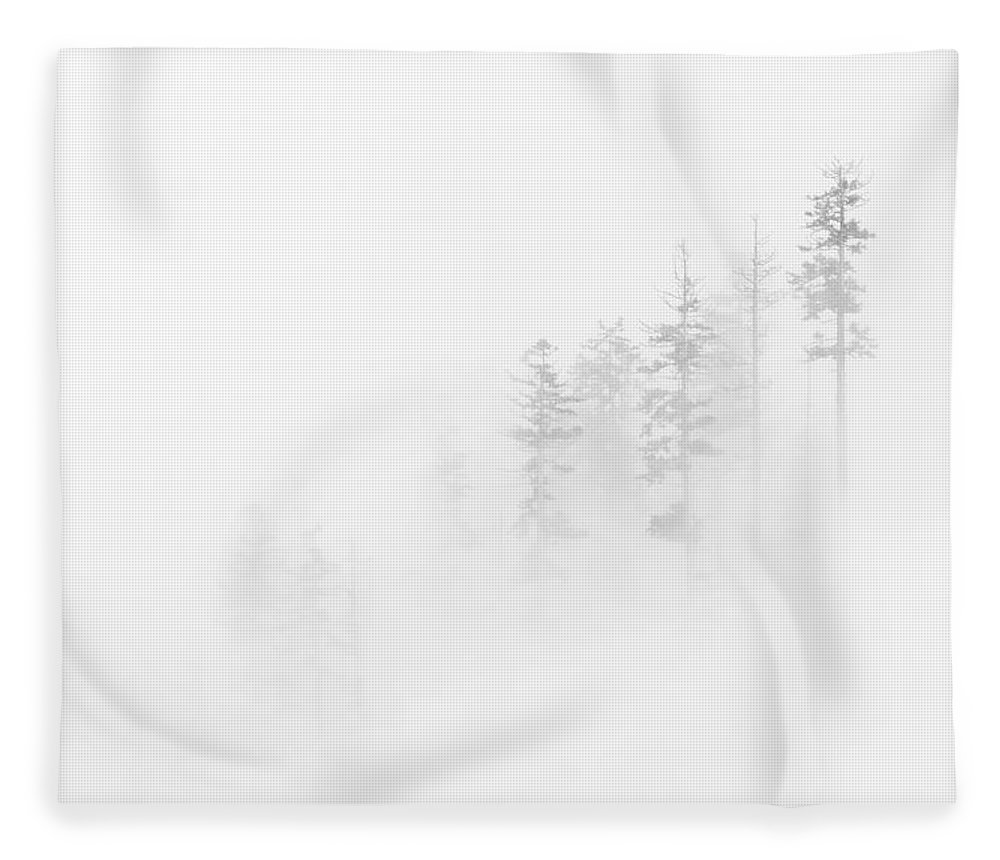Winter Fleece Blanket featuring the photograph Winter Veil by Mike Dawson