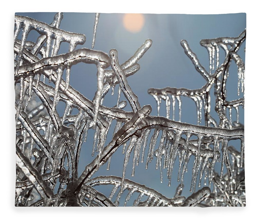 Winter Fleece Blanket featuring the photograph Winter Warmth by Nadine Rippelmeyer