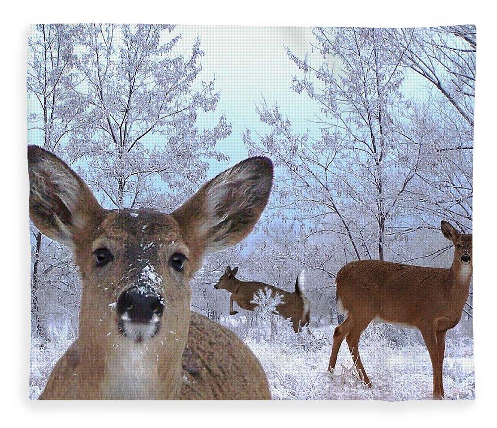 Deer Fleece Blanket featuring the mixed media Winter Wonderland by Bill Stephens