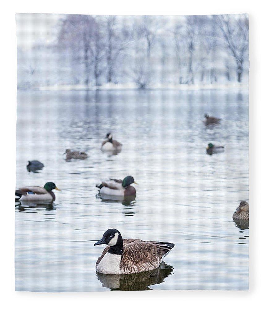 Kremsdorf Fleece Blanket featuring the photograph Winterlong by Evelina Kremsdorf