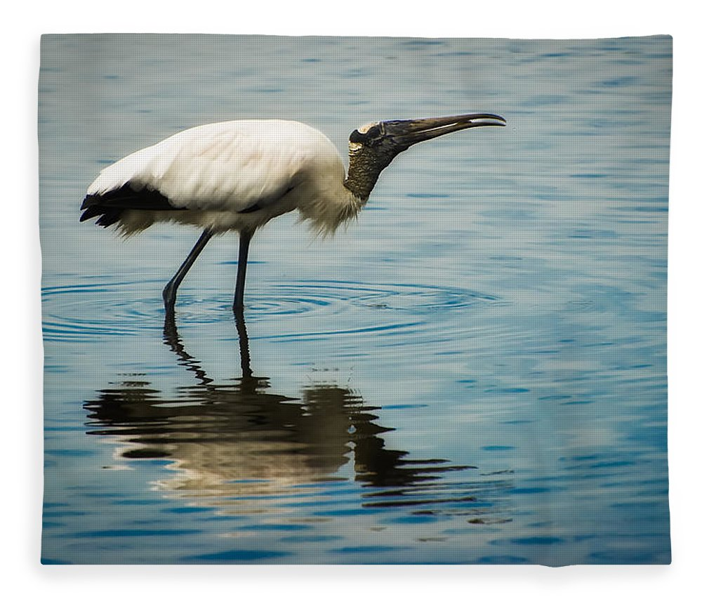 Stork Fleece Blanket featuring the photograph Wood Stork by Rich Leighton