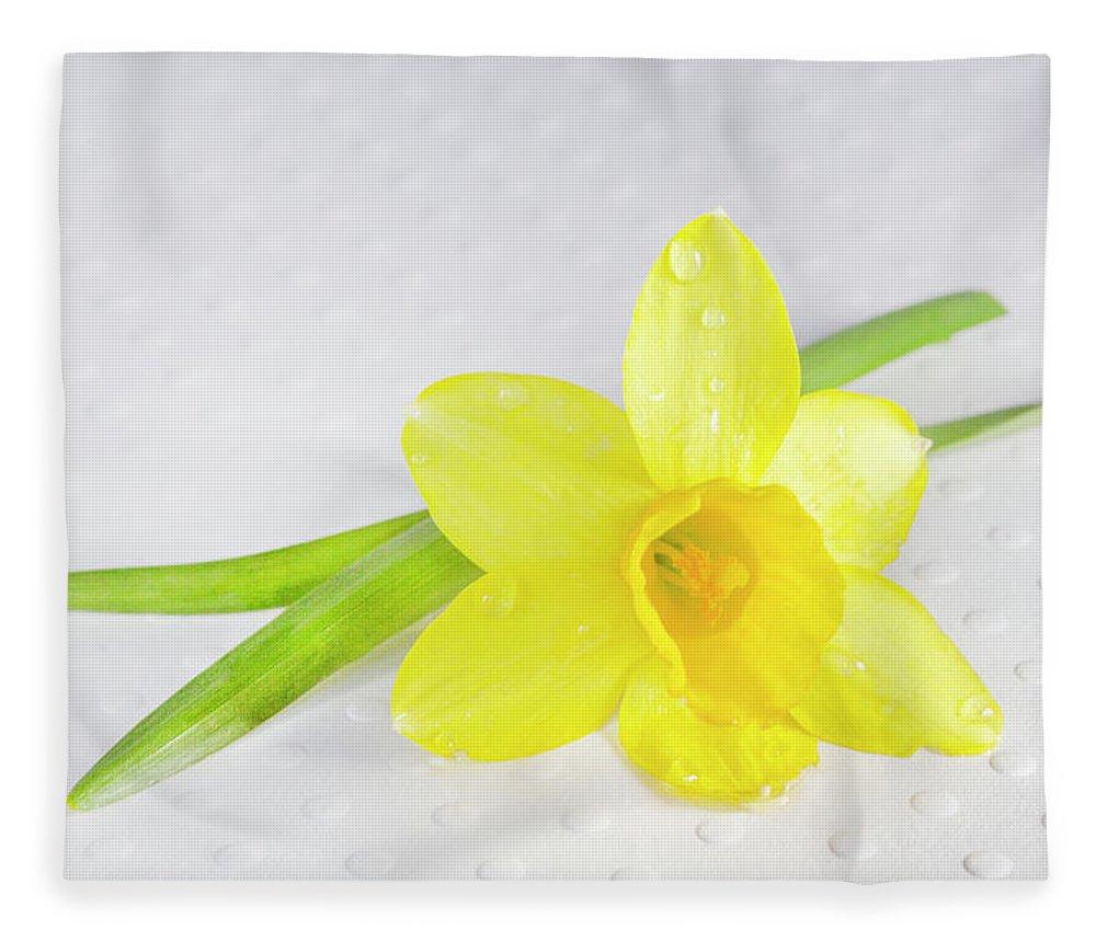 Daffadile Fleece Blanket featuring the photograph Yellow Daffadile by Iris Richardson