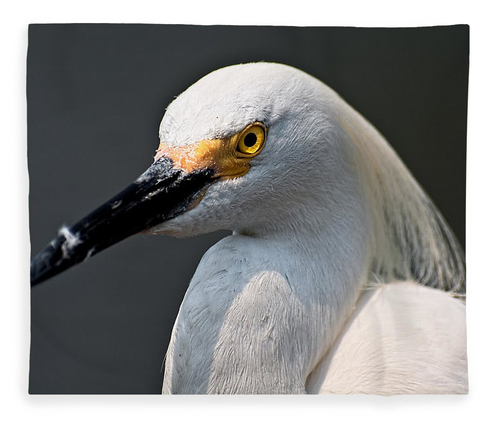 Snowy Egret Fleece Blanket featuring the photograph Yellow Eye by Christopher Holmes