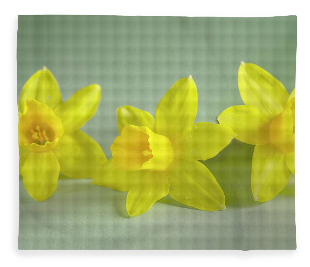 Yellow Mini Narcissus Fleece Blanket featuring the photograph Yellow Mini Narcissus by Iris Richardson