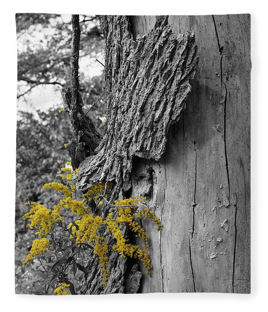Bark Fleece Blanket featuring the photograph Yellow Tufts by Dylan Punke