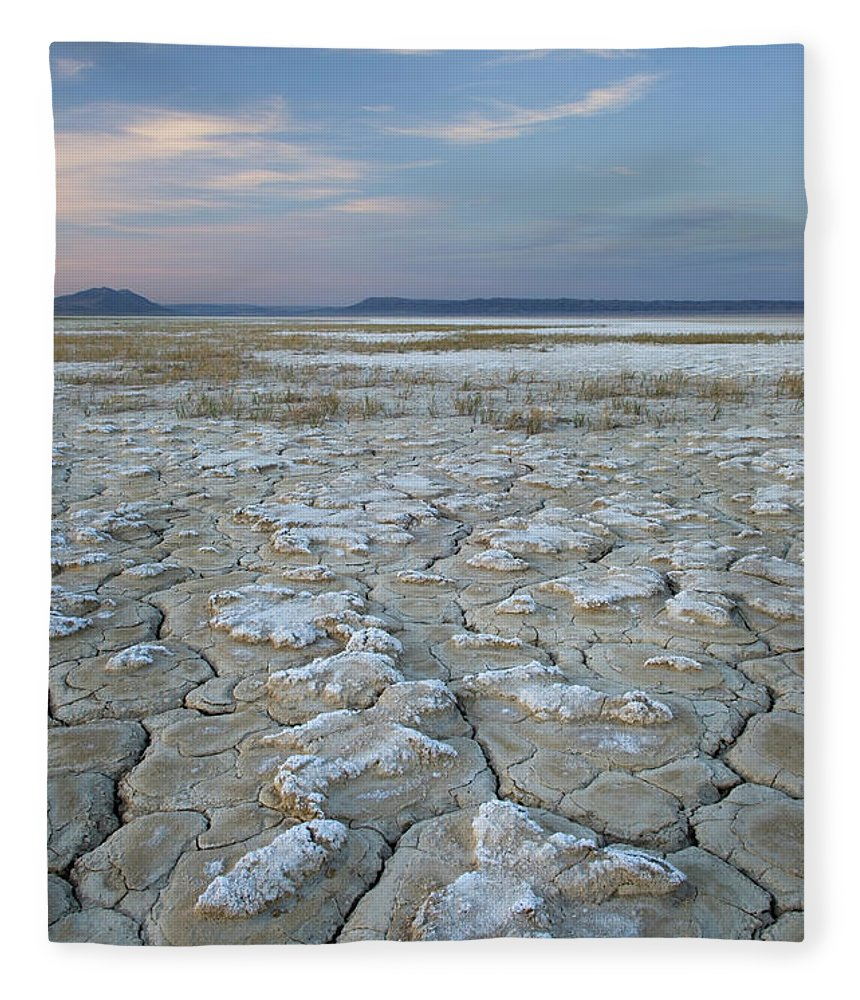 Tranquility Fleece Blanket featuring the photograph Alvord Desert Oregon by Alan Majchrowicz