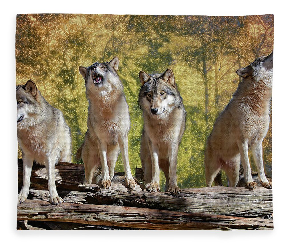 Wolf Fleece Blanket featuring the photograph Howling Wolves by Jeannee Gannuch