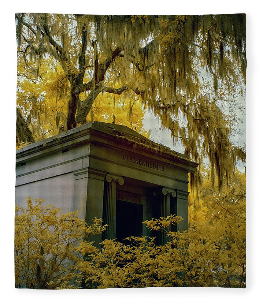 Cemetary Fleece Blanket featuring the photograph Mausoleum In Georgia by Jon Glaser