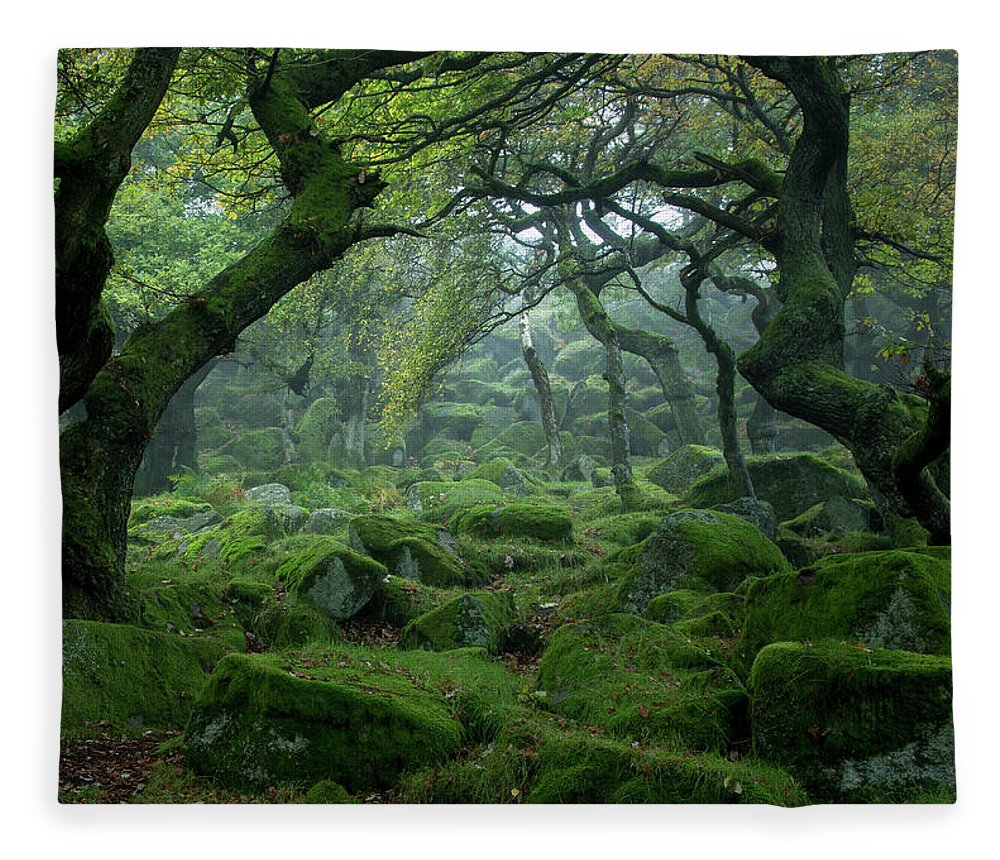 Tranquility Fleece Blanket featuring the photograph Padley Gorge by Duncan Fawkes