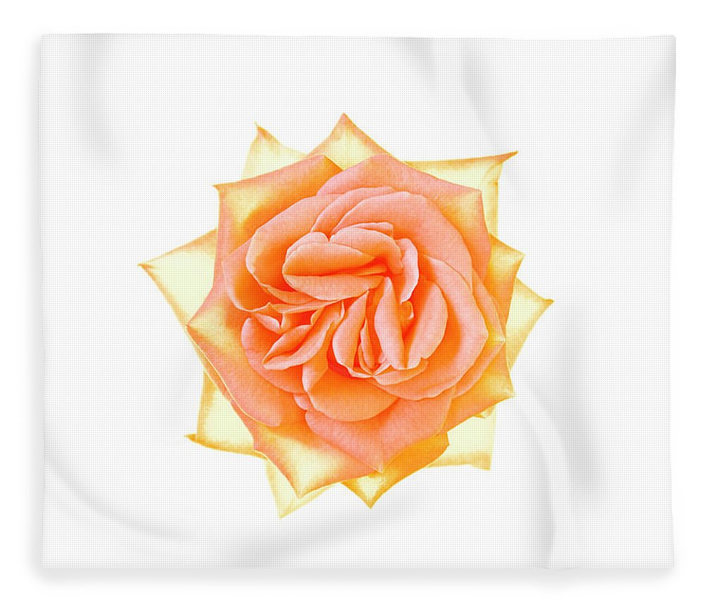 Orange Color Fleece Blanket featuring the photograph Rose Flower by Nicholas Rigg