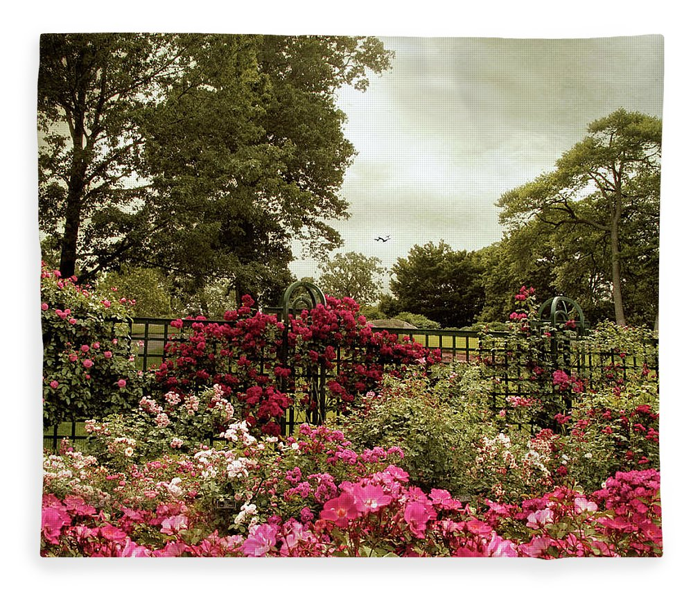 Spring Fleece Blanket featuring the photograph Rose Garden Trellis by Jessica Jenney