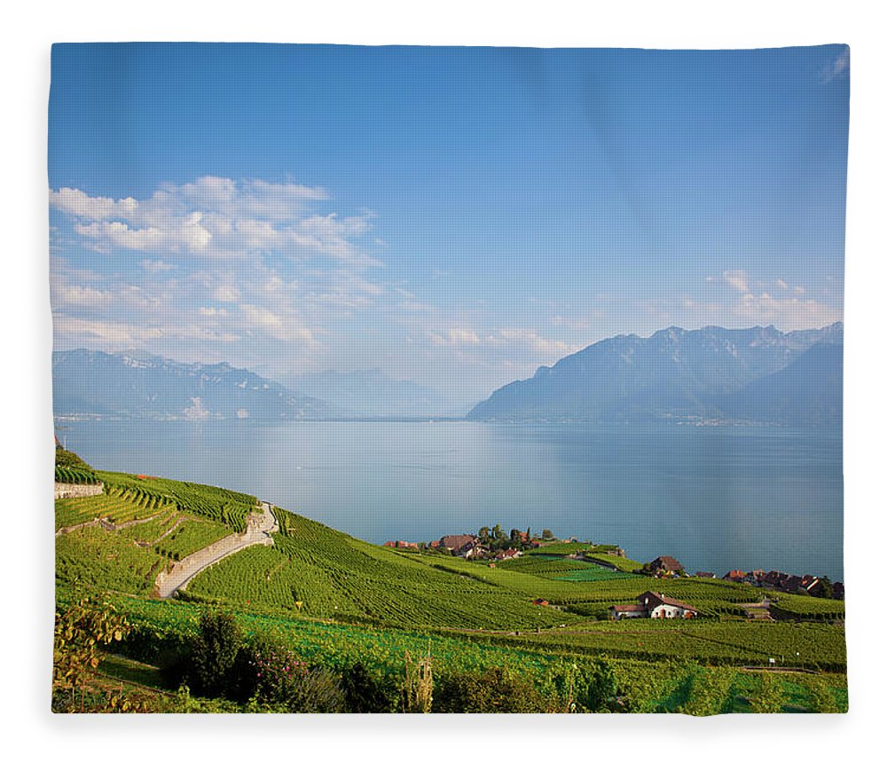 Alcohol Fleece Blanket featuring the photograph Vineyards Around Lake Leman by Onfokus