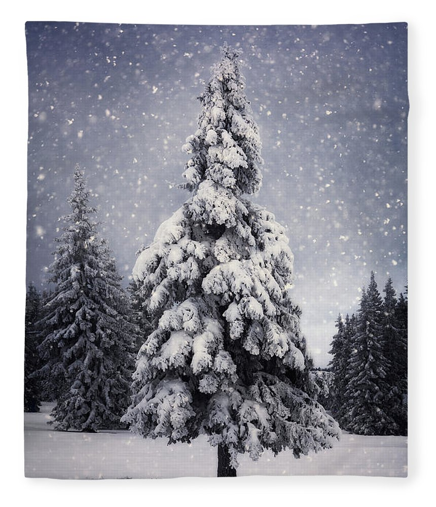 Scenics Fleece Blanket featuring the photograph Winter Tree by Borchee