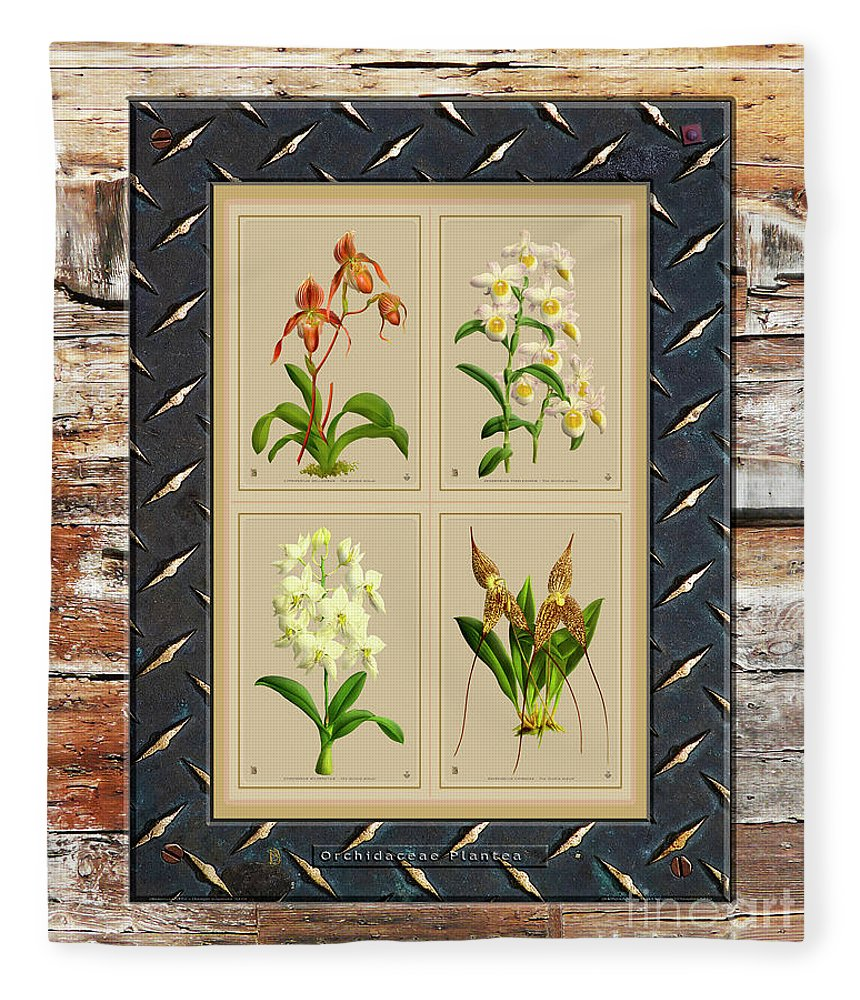 Vintage Fleece Blanket featuring the mixed media Orchids Antique Quatro On Rusted Metal And Weathered Wood Plank by Baptiste Posters
