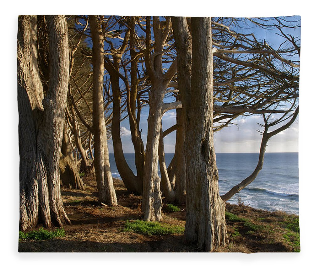 Tranquility Fleece Blanket featuring the photograph Rustic Davenport Coast by Mitch Diamond
