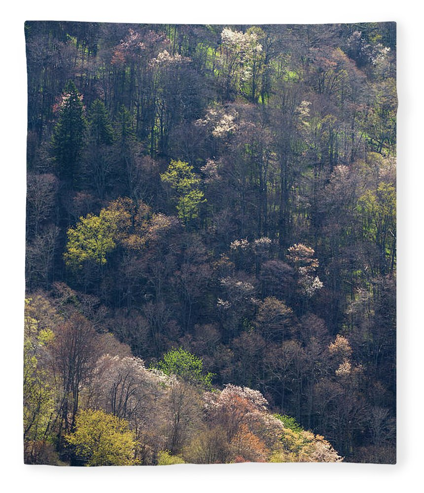 Scenics Fleece Blanket featuring the photograph Early Spring, North Carolina by Jerry Whaley