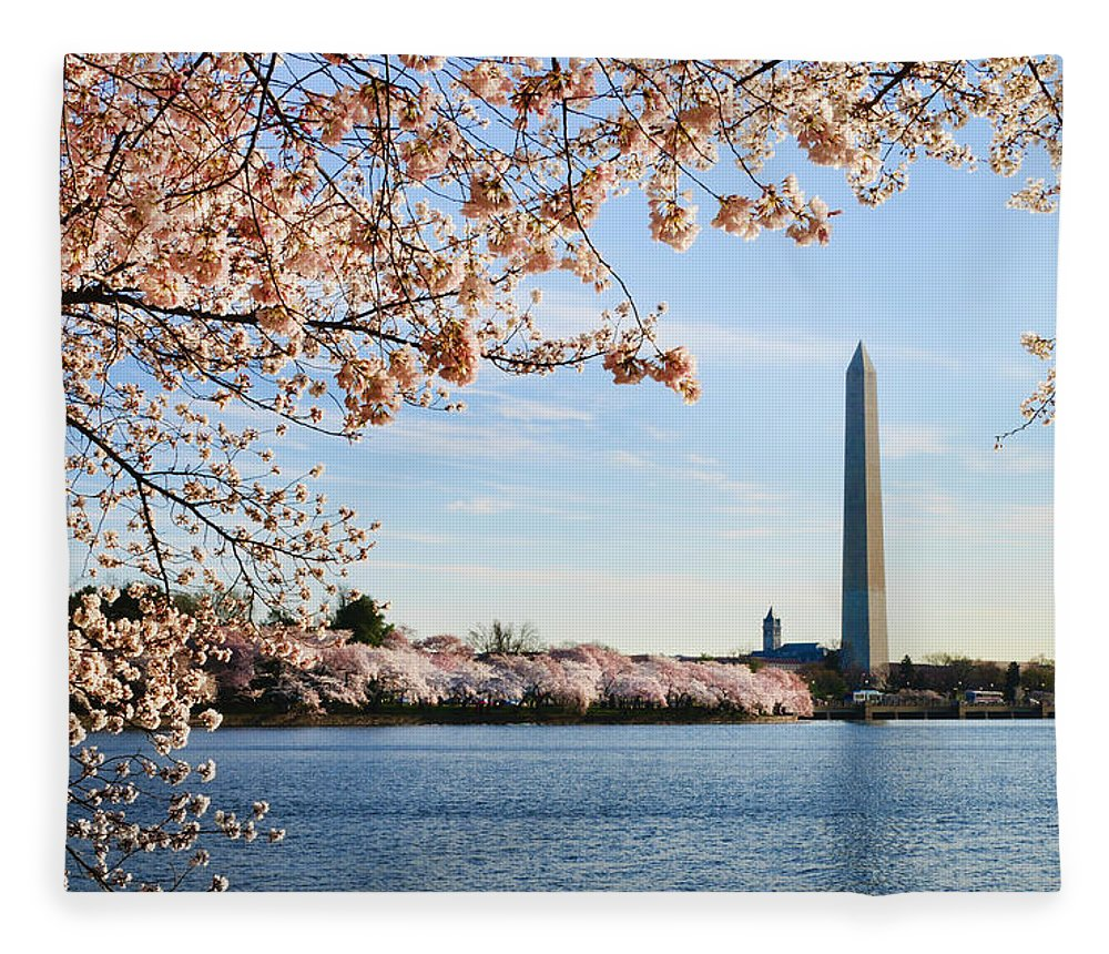 Tidal Basin Fleece Blanket featuring the photograph Washington Dc Cherry Blossoms And by Ogphoto