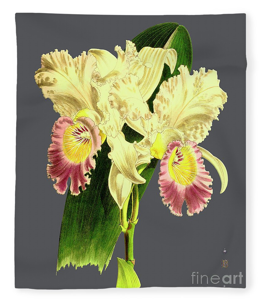 Vintage Fleece Blanket featuring the digital art Orchid Old Print by Baptiste Posters