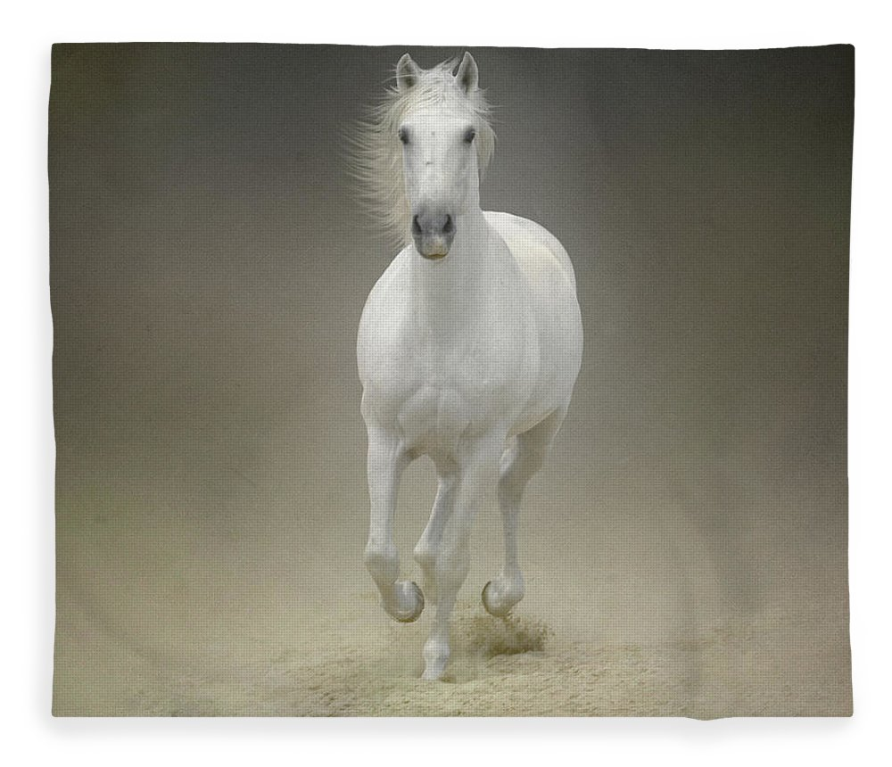 Horse Fleece Blanket featuring the photograph White Horse Galloping by Christiana Stawski