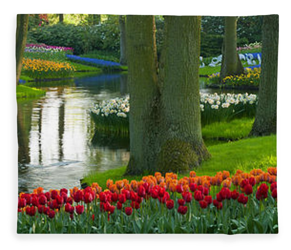 Scenics Fleece Blanket featuring the photograph Spring Flowers In A Park by Jacobh