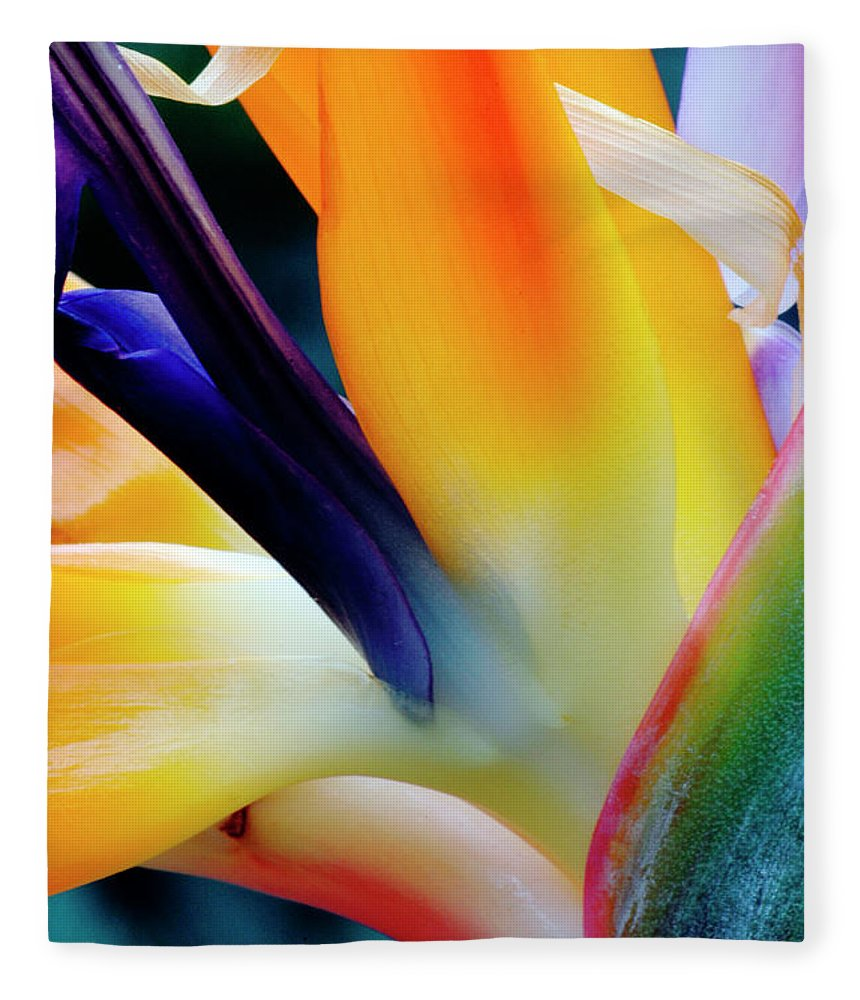 Banana Tree Fleece Blanket featuring the photograph A Close-up Of A Flower Of A Bird Of by Eromaze