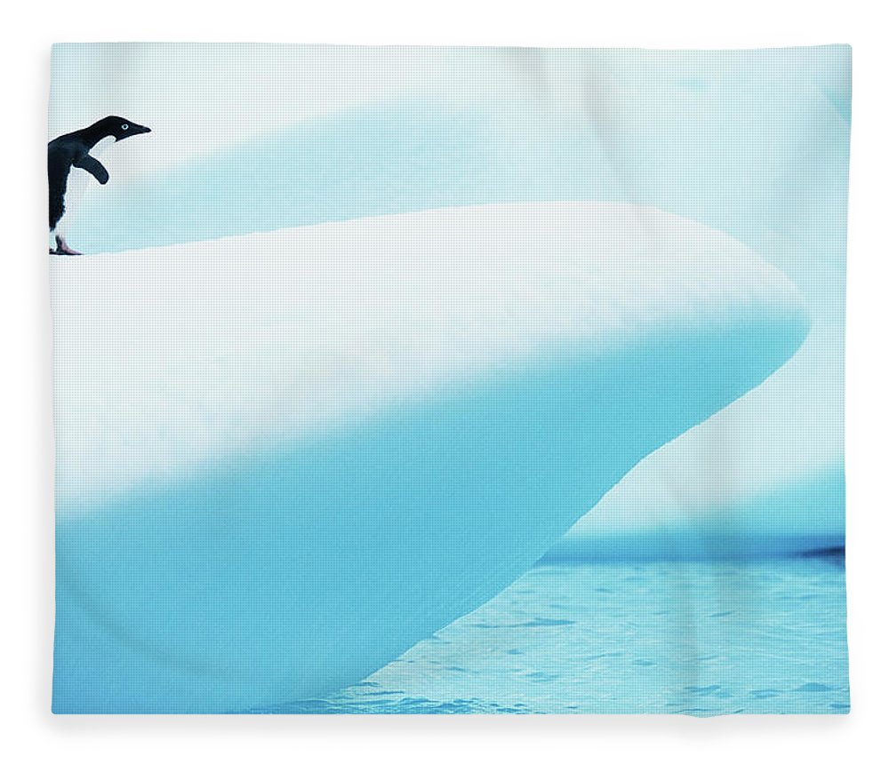 The End Fleece Blanket featuring the photograph Adelie Penguin Pygoscelis Adeliae by Paul Souders