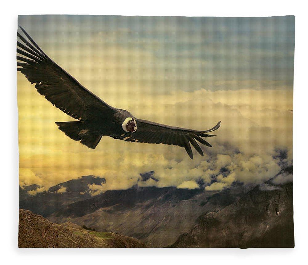 Animal Themes Fleece Blanket featuring the photograph Andean Condor by Istvan Kadar Photography