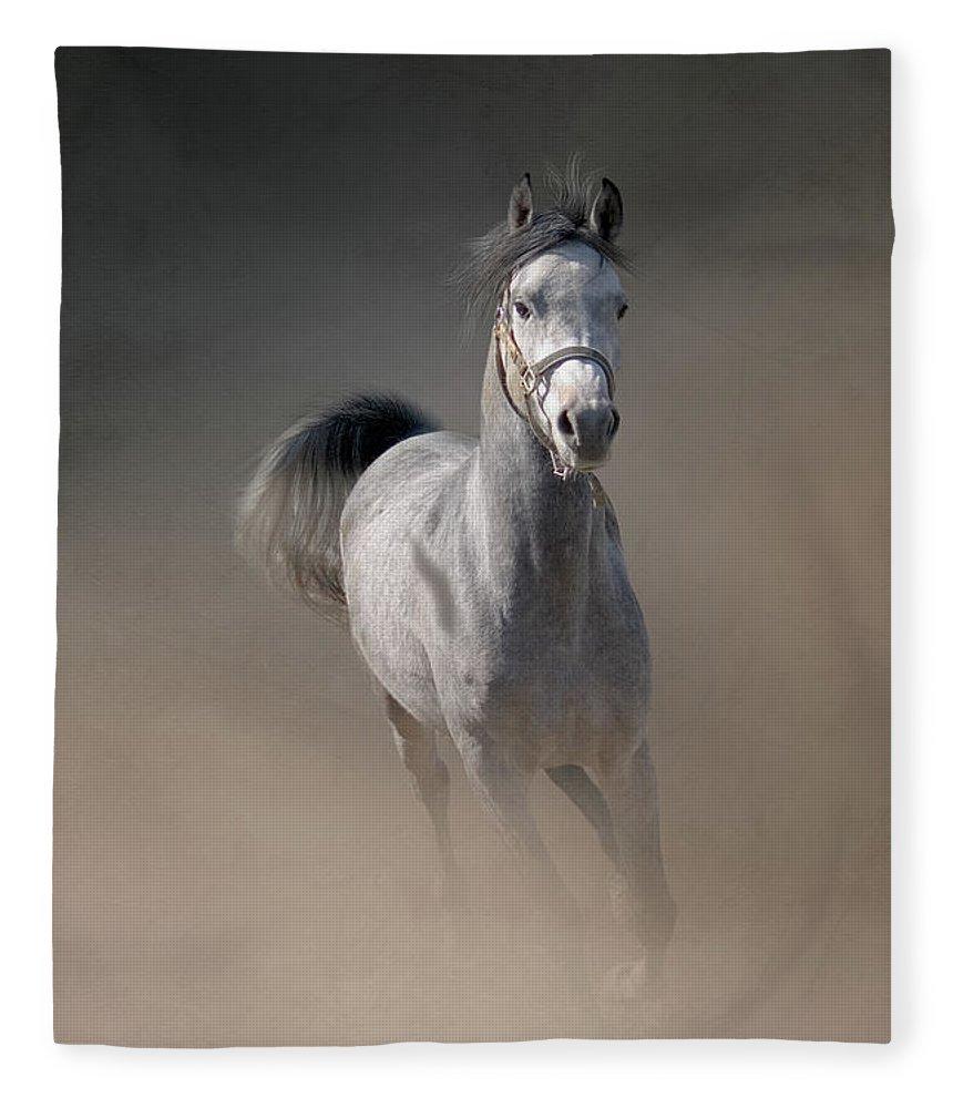 Horse Fleece Blanket featuring the photograph Arabian Horse Running Through Dust by Christiana Stawski
