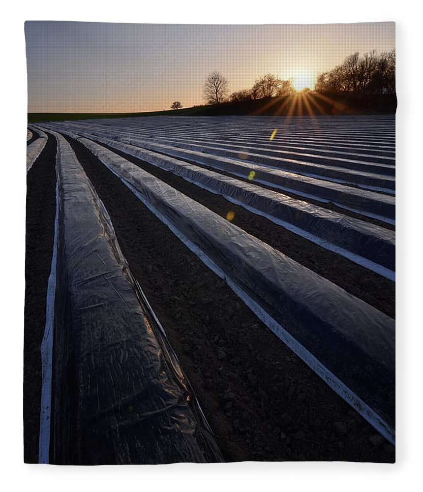 Tranquility Fleece Blanket featuring the photograph Asparagus Field by Andy Brandl