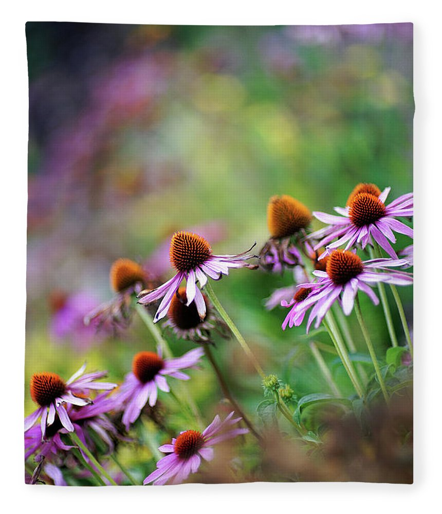 Outdoors Fleece Blanket featuring the photograph Autumn Echinacea by By Kelly Sereda © 2011
