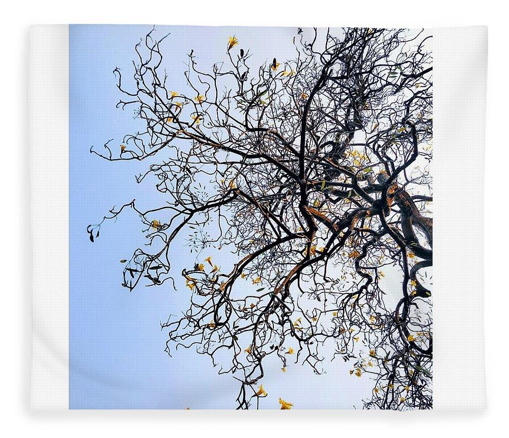 Autumn Fleece Blanket featuring the photograph Autumn by Priya Hazra