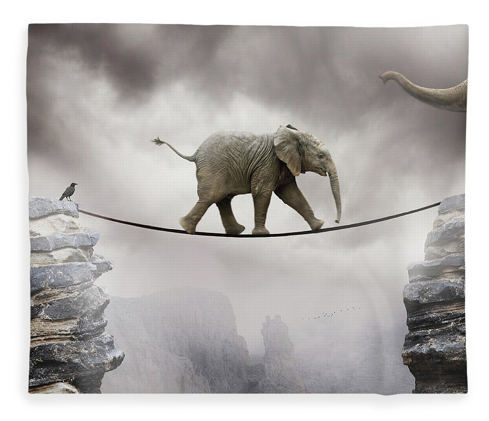 Animal Themes Fleece Blanket featuring the photograph Baby Elephant by By Sigi Kolbe