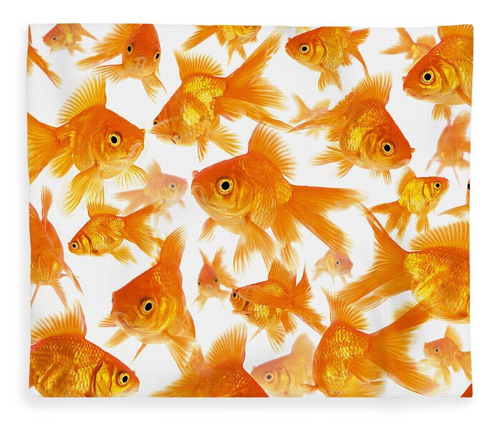 Orange Color Fleece Blanket featuring the photograph Background Showing A Large Group Of by Cocoon