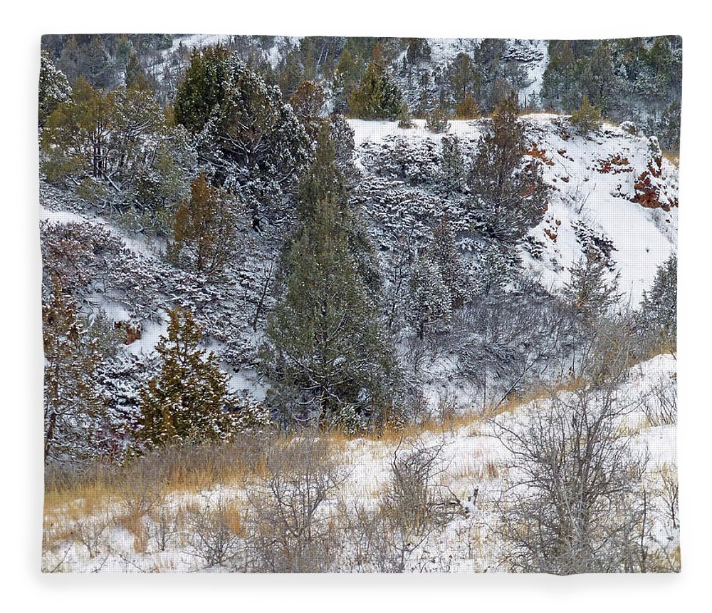 North Dakota Fleece Blanket featuring the photograph Badlands Winter by Cris Fulton