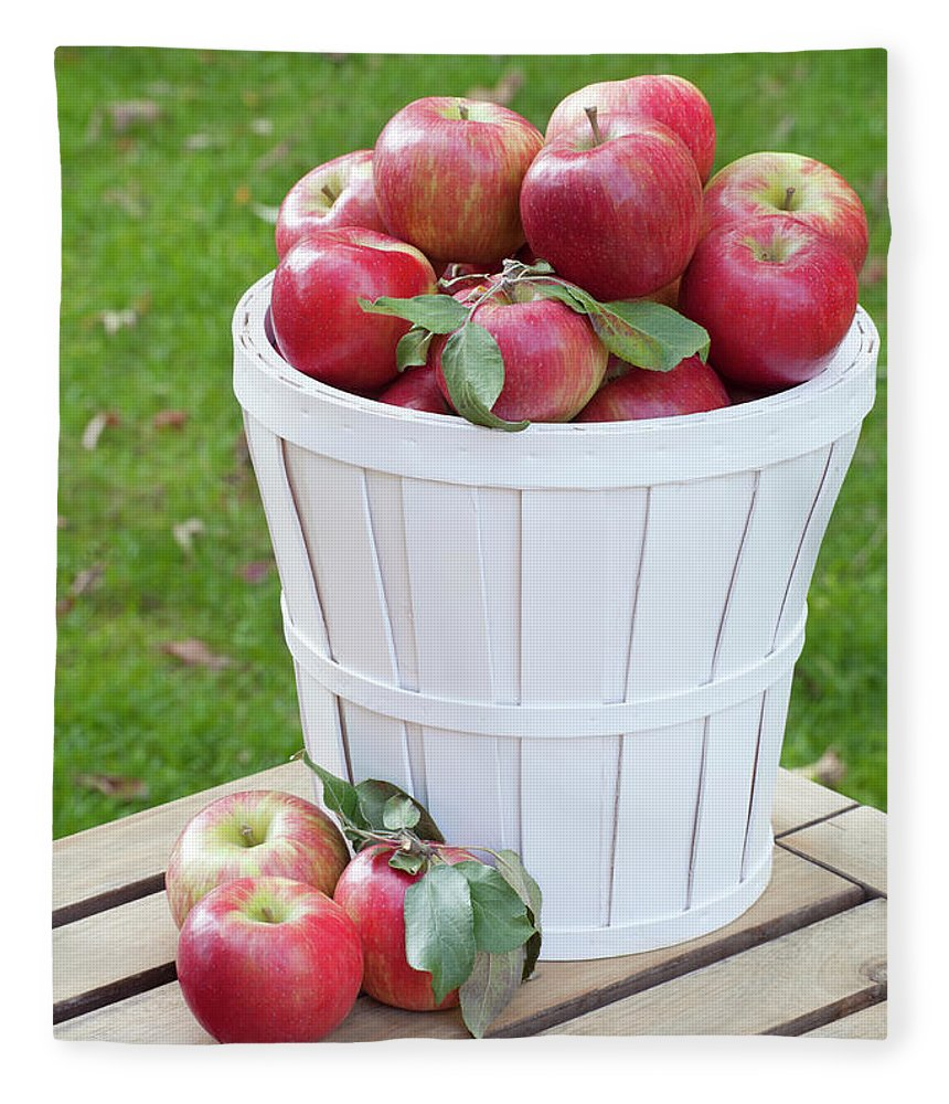 Outdoors Fleece Blanket featuring the photograph Basket Of Honey Crisp Apples by Wholden