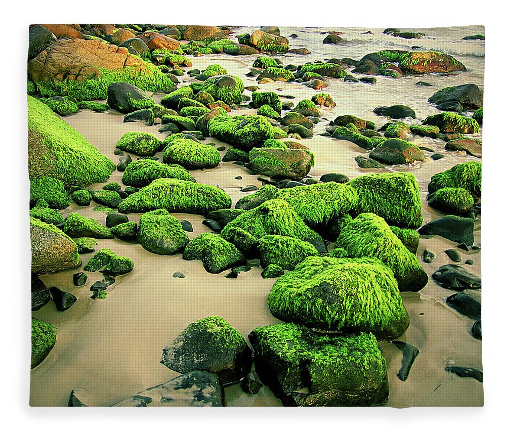 Tranquility Fleece Blanket featuring the photograph Beach Rocks Covered With Seaweed by Andre Bernardo