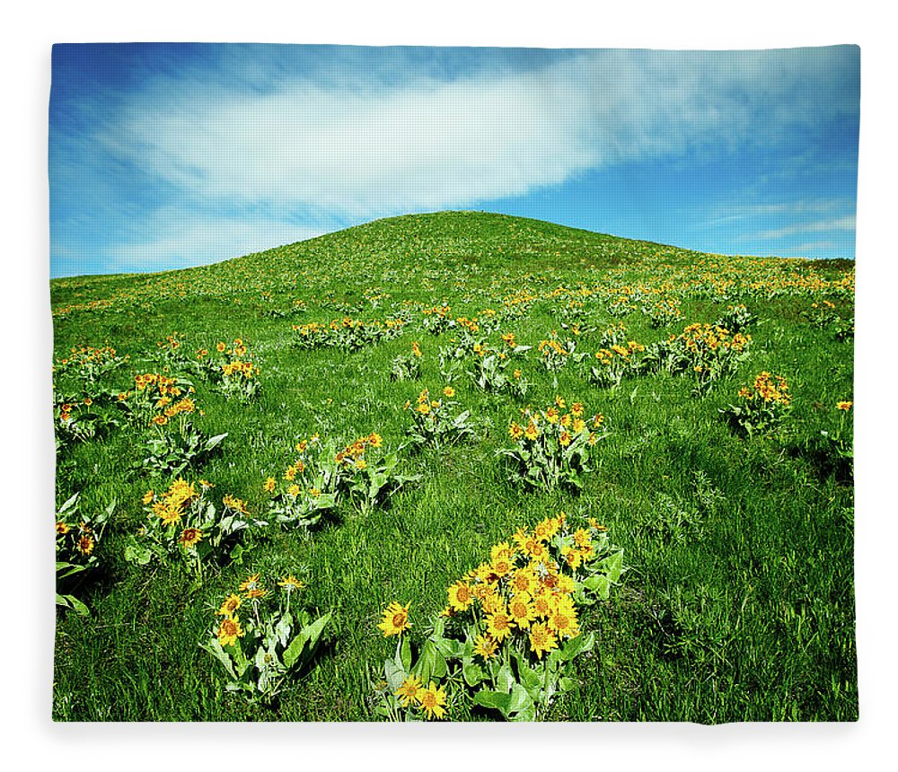 Yellow Fleece Blanket featuring the photograph Beaver Creek Flowers by Todd Klassy