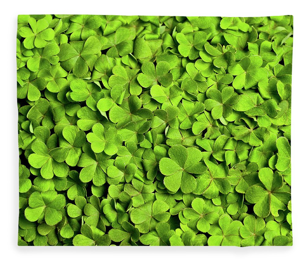 Leaf Fleece Blanket featuring the photograph Bed Of Clover by Kledge