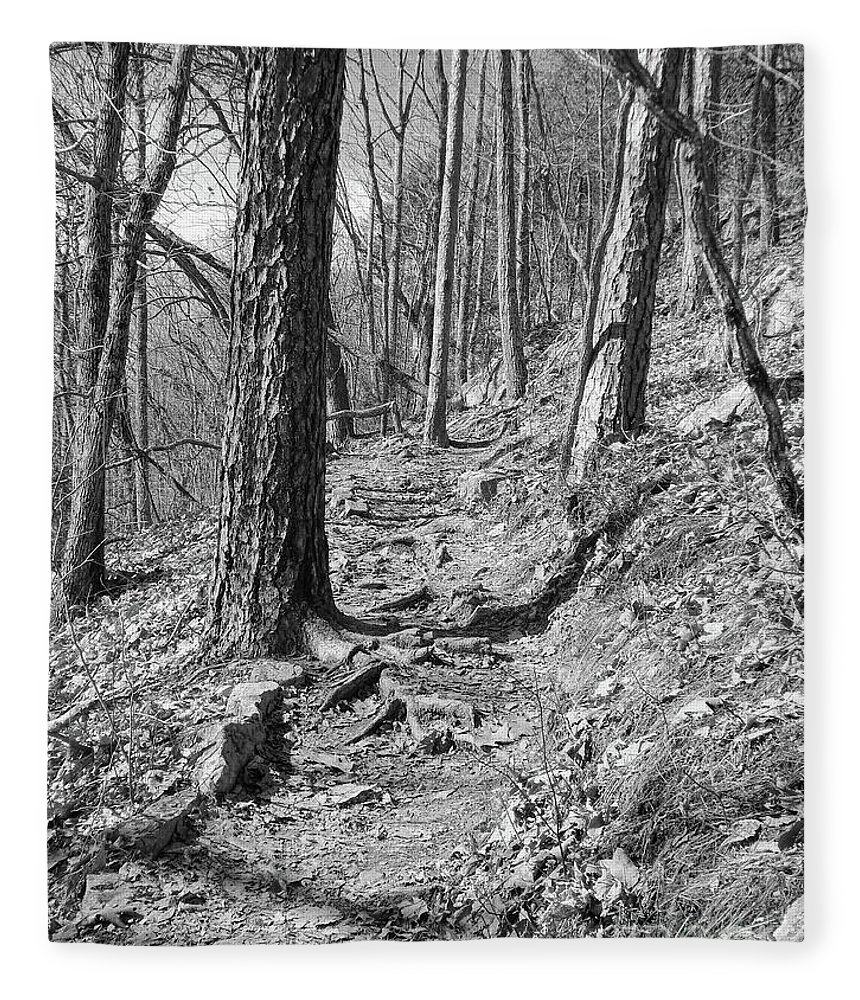 Black And White Fleece Blanket featuring the photograph Black And White Mountain Trail by Phil Perkins