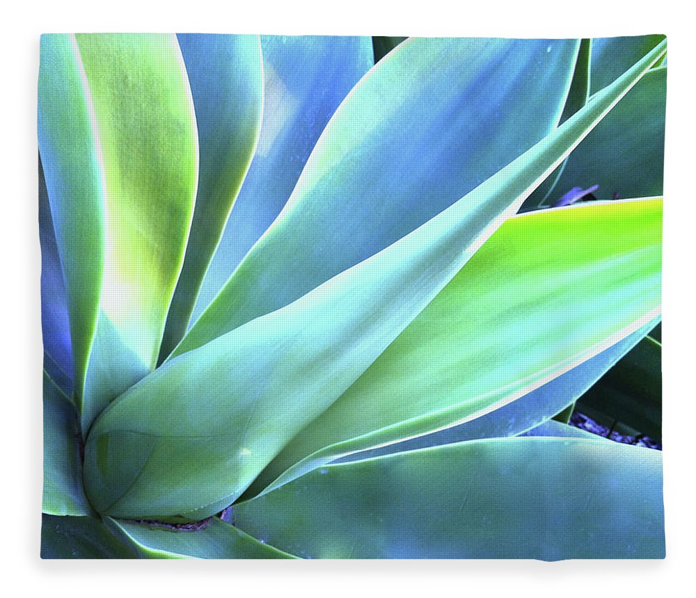 Agave Fleece Blanket featuring the photograph Blue Agave by Denise Taylor