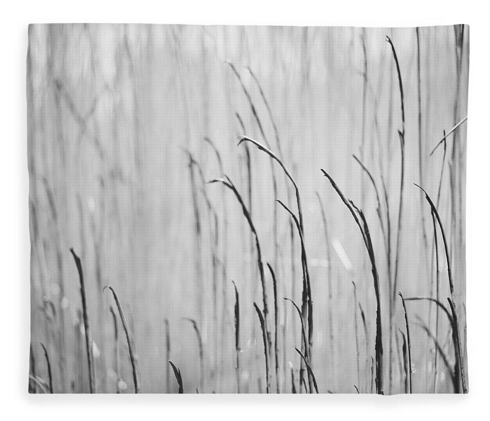 Burnt Fleece Blanket featuring the photograph Burnt Grass by Yurimatte.com