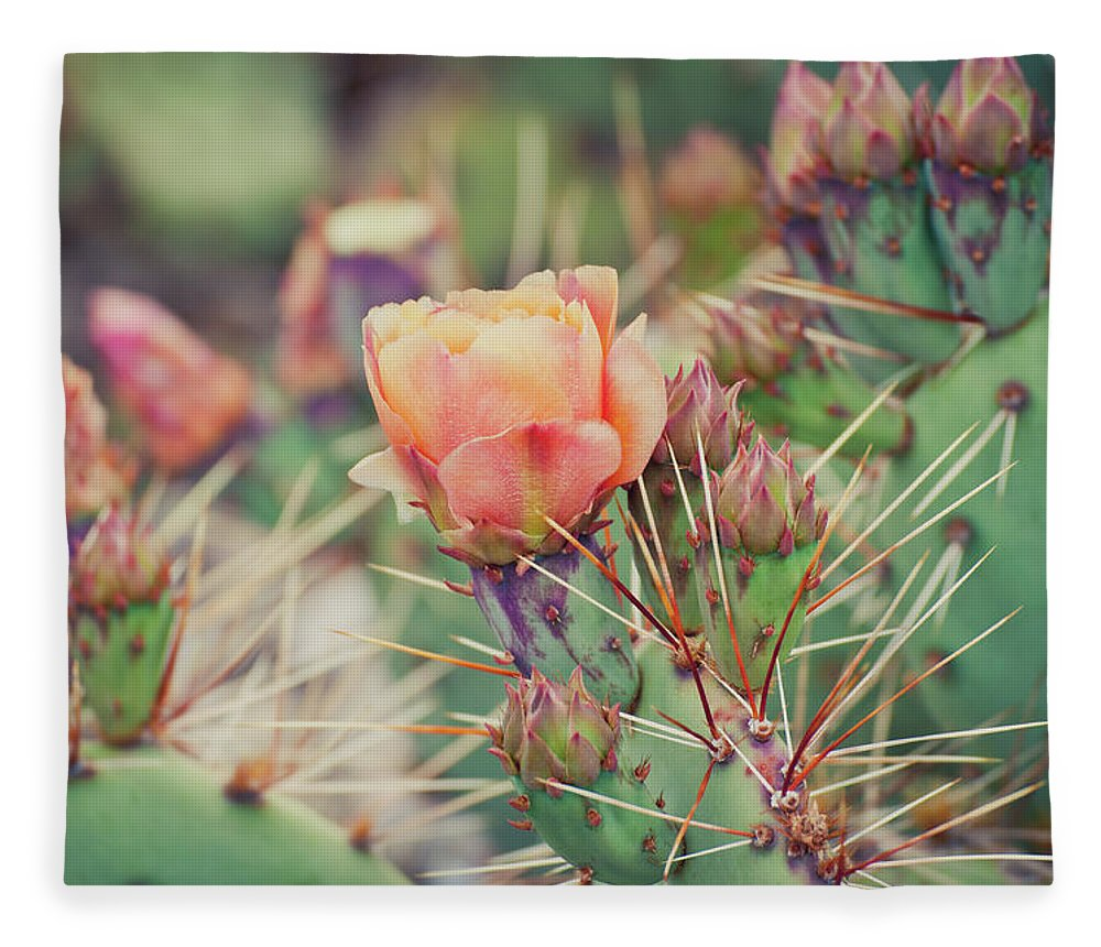 Orange Color Fleece Blanket featuring the photograph Cactus Blossom by Harpazo hope