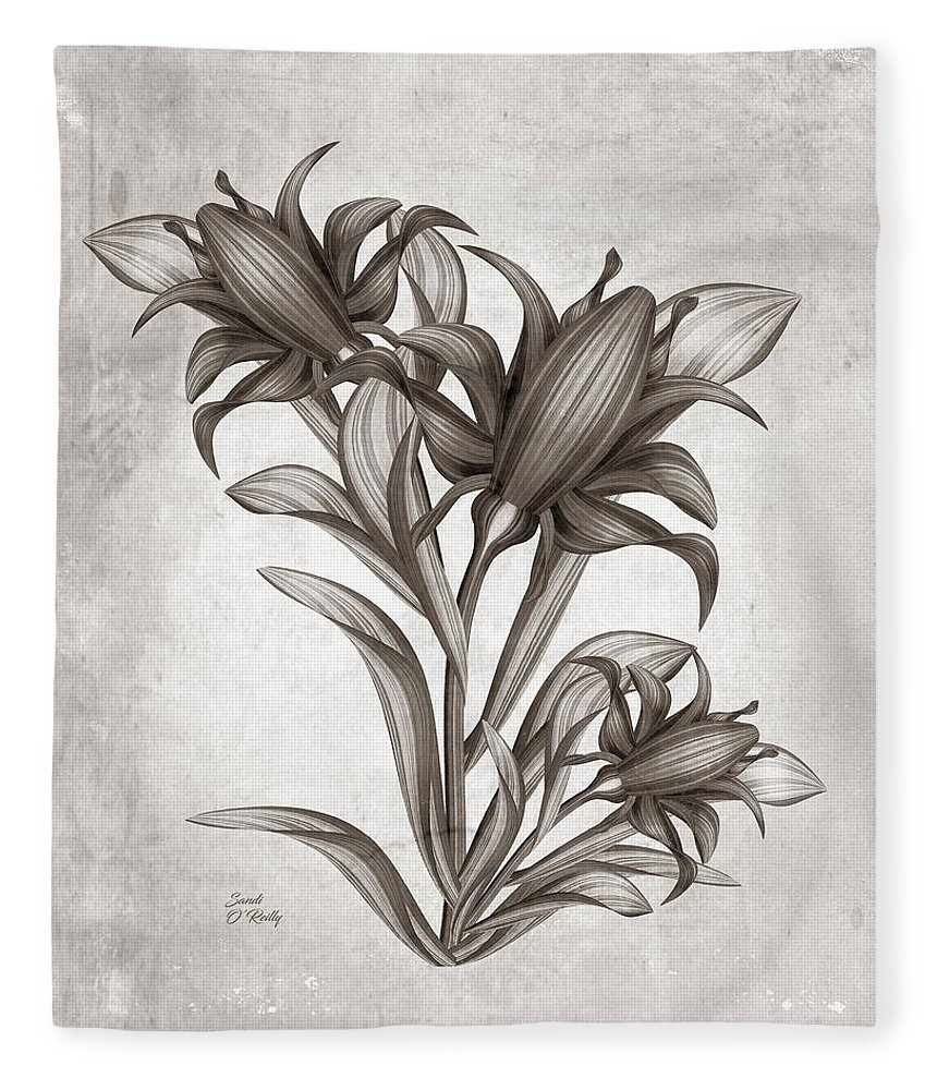 Canna Flowers Watercolor Sepia Fleece Blanket For Sale By Sandi Oreilly